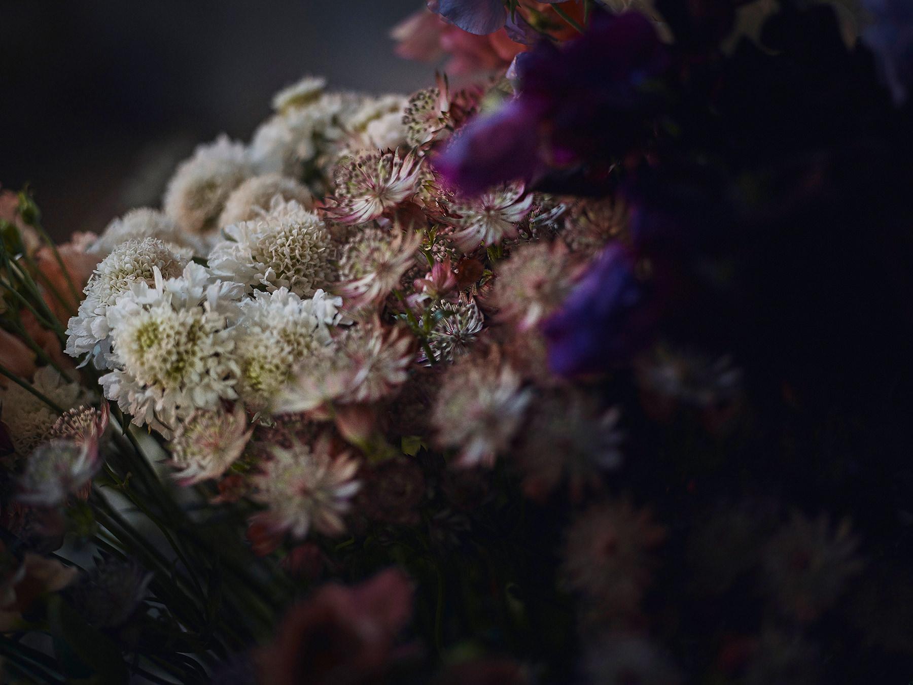 wild_flower_fairy-020