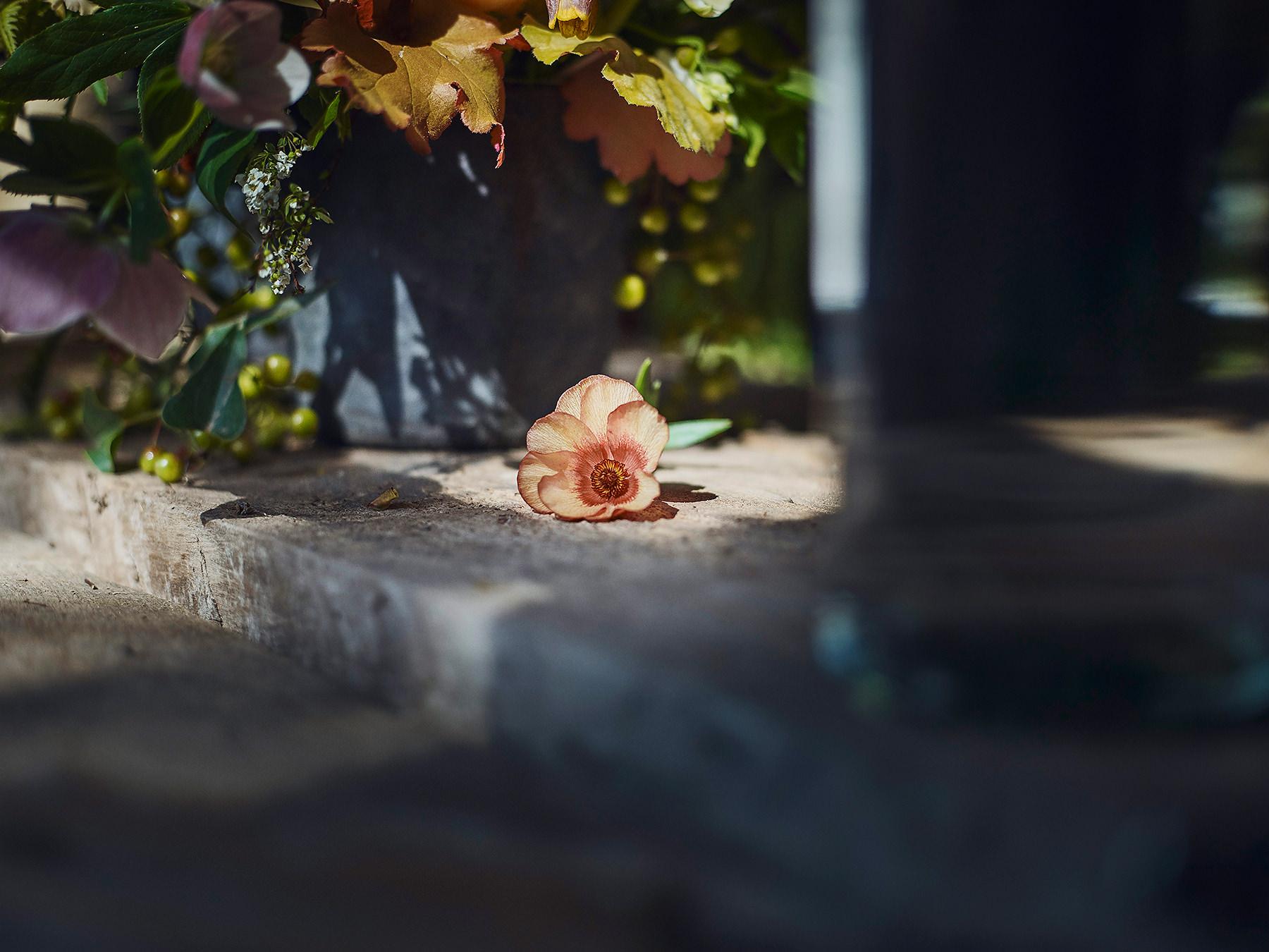 wild_flower_fairy-016